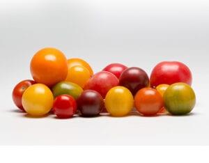 TOMATO- Cherry Medley